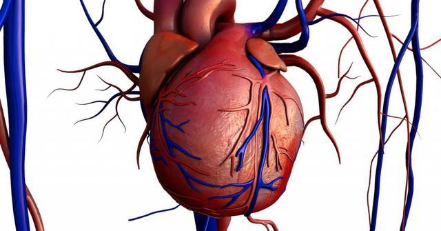 лечение сердечно сосудистой системы