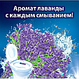 Чистящее средство для унитаза Bref Сила-Актив Свежесть Лаванды 3х50г, фото 7