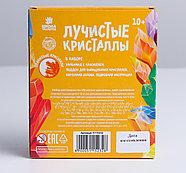 Набор для выращивания кристалла «Опыты. Лучистые кристаллы», цвет оранжевый, фото 4