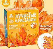 Набор для выращивания кристалла «Опыты. Лучистые кристаллы», цвет оранжевый, фото 2