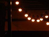 Гирлянда Belt Light LED Econom. Гирлянда 10 метров. Гирлянда для кафе, ретро гирлянда, гирлянда с лампочками, фото 7