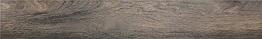 R Hollywood M 161x985