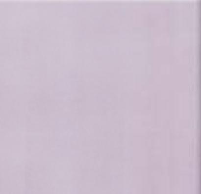 Плитка для пола глазурованная Evita VC 400x400 /9