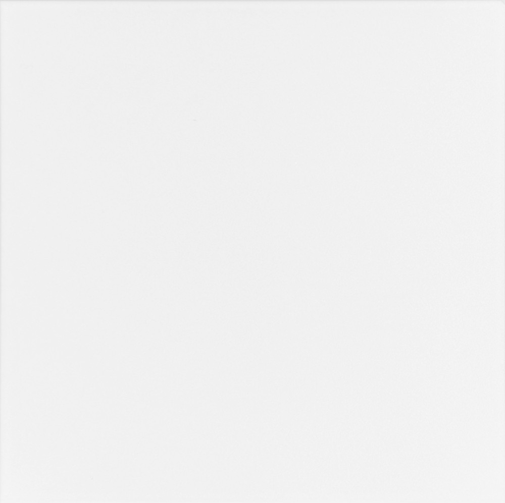 Плитка для пола глазурованная Mono W 400x400 /9