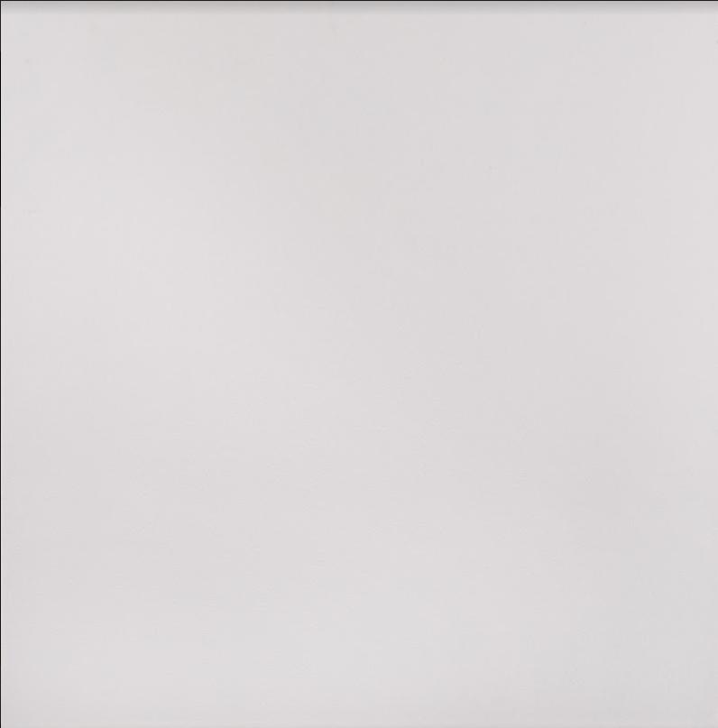 Плитка для пола глазурованная Paula W 400x400 /9