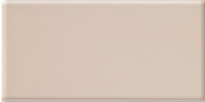 Плитка облицовочная Mono BM 250x750
