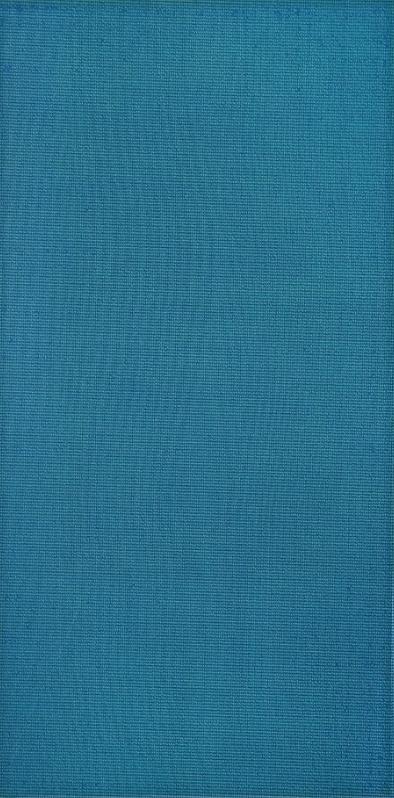 Плитка облицовочная Silk TR 250x500 /16