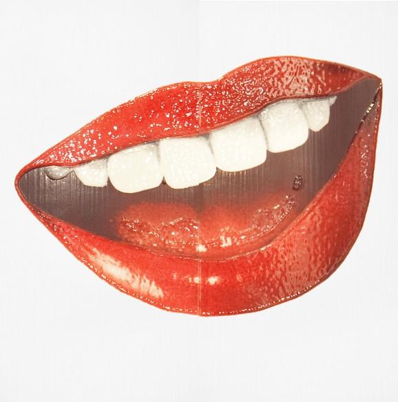 Декор-панно Cuba Lips 590x595 D6