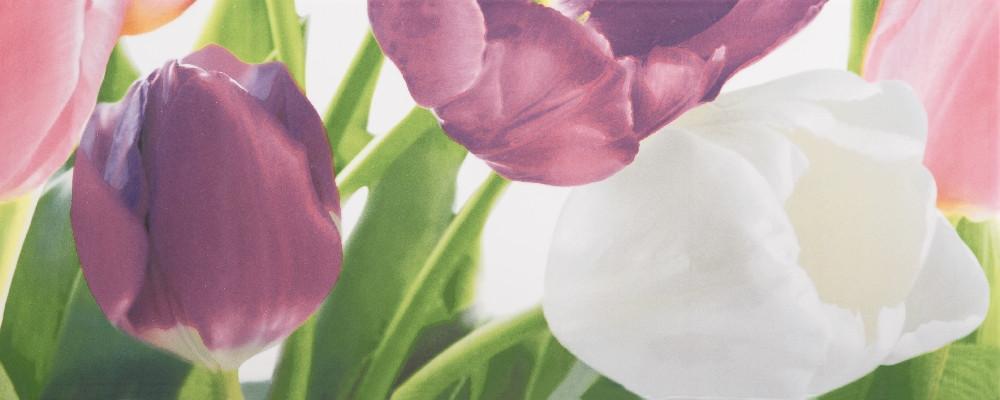 Плитка облицовочная Tulip 2 PN 200x500 /17