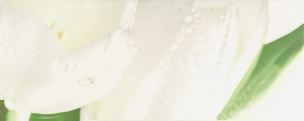 Плитка облицовочная Tulip Maxi 4 W 200x500 /17