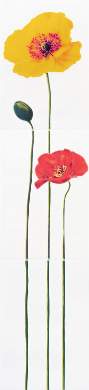 Декор-панно Monocolor Poppy R 275x1200 D2