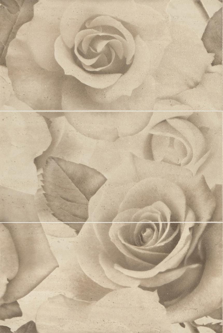 Декор-панно Travertine Roses BC 885x595 D6/LG