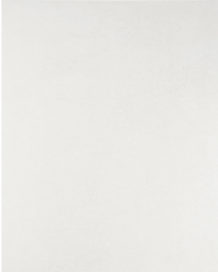 Плитка для пола ректифицированная Arc W 295x595 /6 P
