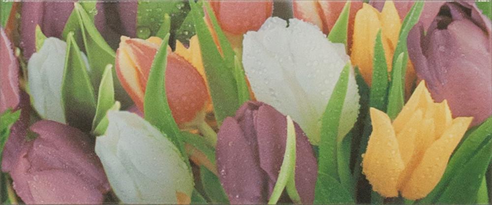 Плитка облицовочная Alana 2 Tulip VC 250x600 /10