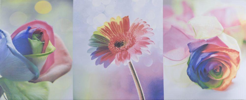 Плитка облицовочная Alana Flowers 250x600 /10