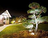Ланшафтная подсветка территорий, освешение деревьев, предусадебных участков, освещение дворов, улиц, парков., фото 8