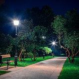 Замена светильников уличного освещения, монтаж светильников и демонтаж фонарей уличного освещения, фото 4