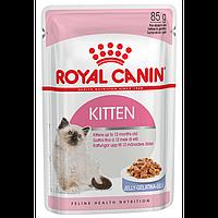 Роял Канин - Royal Canin Kitten в желе влажный корм для котят 85гр.