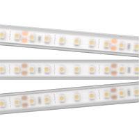 Светодиодная лента RTW 2-5000PW 24V White6000 2x (3528, 600 LED, LUX) (arlight, 9.6 Вт/м, IP66)