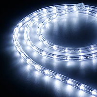 Образец Дюралайт ARD-REG-FLASH Cool (220V, 36 LED/m, 2m) (Ardecoled, Закрытый)