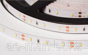 Светодиодная лента RT 2-5000 12V White (3014, 300 LED, LUX) (arlight, 7.2 Вт/м, IP20)