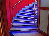 Гибкий неон 12*6 мм. 12 v. синий. Бухта - 50 метров. Цвет шнура как и цвет свечения. Flex neon для рекламы., фото 5