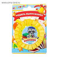 Медаль - розетка «Выпускник детского сада», енот, 9,4 х 13,5 см
