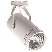 Светодиодный светильник трековый BERN 30W белый
