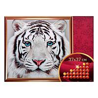 """Алмазная вышивка с частичным заполнением """"Белый тигр"""", 37 х 37 см"""