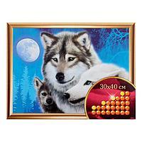 """Алмазная вышивка с частичным заполнением """"Волки"""", 30 х 40 см"""