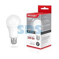 Лампа светодиодная Груша A60 25,5 Вт E27 2423 Лм 6500 K нейтральный свет REXANT