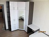 Шкафы в спальню, фото 4