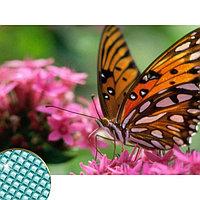 """Алмазная вышивка с полным заполнением """"Бабочка"""", 22 х 32 см"""