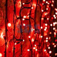 """Гирлянда """"Светодиодный Дождь"""" 2х1,5м,  постоянное свечение,  черный провод """"КАУЧУК"""",  230 В,  диоды КРАСНЫЕ,"""