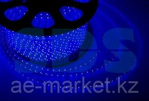 LED лента 220 В,  13х8 мм,  IP67, SMD 5050, 60 LED/m,  цвет свечения синий