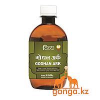 Годхан Арк для укрепления организма (Godhan Ark PATANJALI), 450 мл