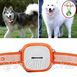 GPS Трекер (GPS Tracker) ошейник для домашних животных GT011