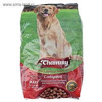 Сухой корм Chammy для собак крупных пород, говядина, 12 кг
