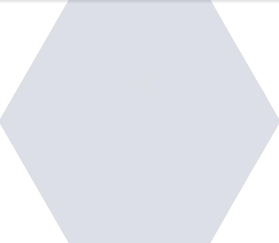 Плитка для пола глазурованная Nika W 100x115