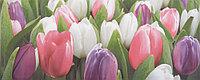 Плитка облицовочная Tulip Mini PN 200x500 /17