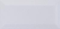 Плитка облицовочная Umbria Mono WM 100x200