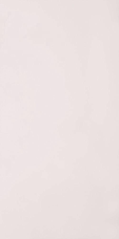 Плитка для пола ГРЕС полированный PK 0000 600x1200 /9.5