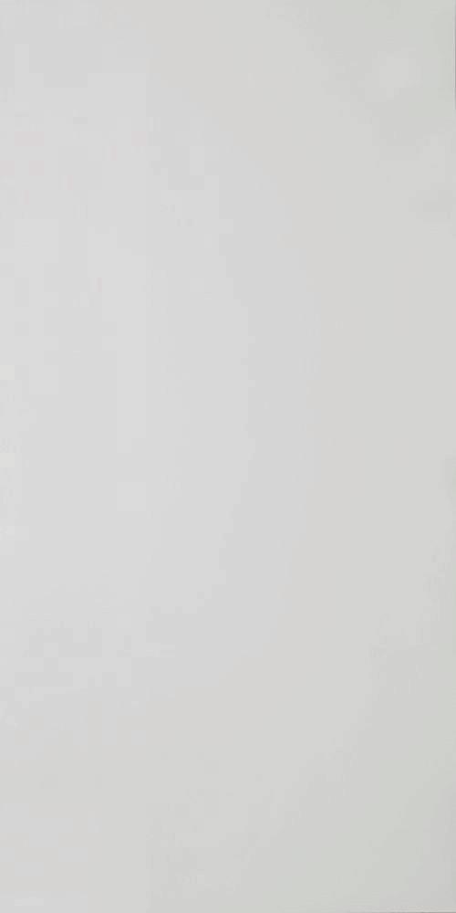 Плитка для пола ГРЕС полированный PK MN 000 600x1200 /14