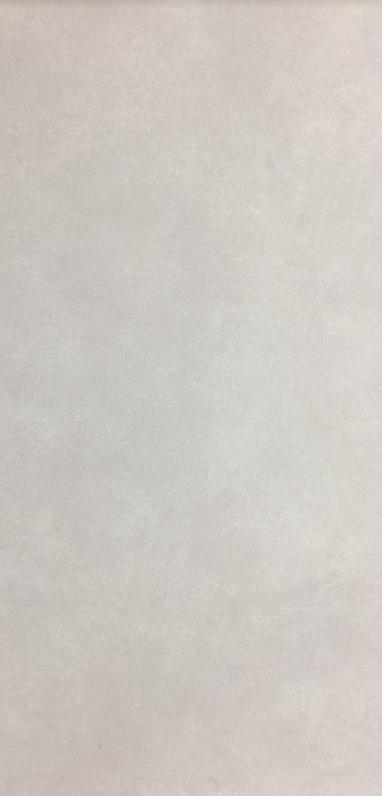 Плитка для пола ректифицированная CB Fuji W 295x595 /6 P