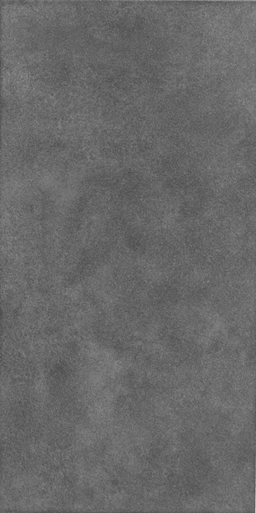 Плитка для пола ректифицированная Fuji GRT 295x595 P