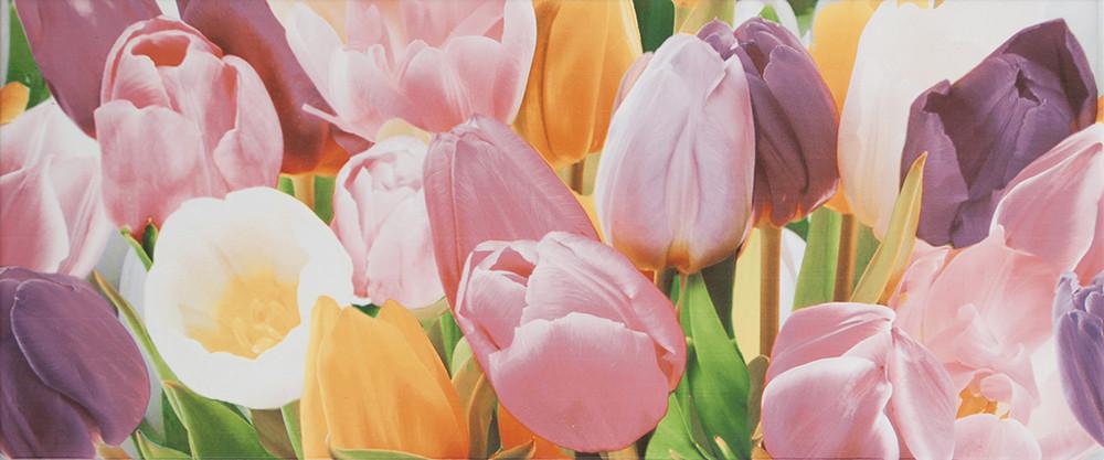 Плитка облицовочная Alana Tulip PN 250x600 /10