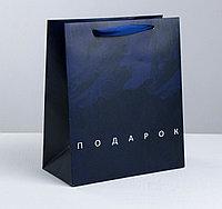 Пакет ламинированный вертикальный «Подарок», 23 × 27 × 11.5 см