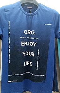 Мужская футболка HIGHLANDER ORG. Турция