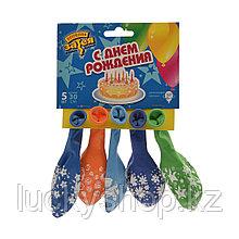 Воздушные шарики 1111-0806 (5 шт. в пакете)