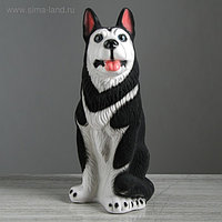 """Копилка """"Собака хаски"""", флок, чёрный цвет, 42 см"""